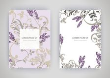 Set of card with flower lavender, leaves. Wedding ornament conce Royalty Free Stock Image