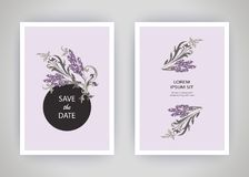 Set of card with flower lavender, leaves. Wedding ornament conce Royalty Free Stock Images
