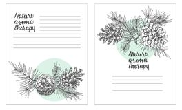 Set card template with pattern realistic botanical ink sketch of fir tree branches with pine cone on white background. Good idea for invitations, greeting royalty free illustration
