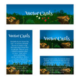 Set of cards with glade, mushrooms and berries Stock Photo