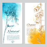Set of 2 cards with hand drawn flowers and leaves vector illustration