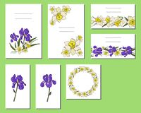 Set of cards with iris and narcissus flowers vector illustration