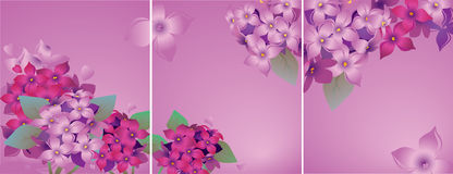Set of cards with lilac Royalty Free Stock Images