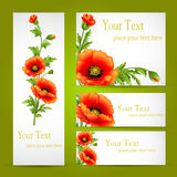 A set of cards with poppy flowers Royalty Free Stock Images