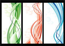 Set of cards with Vector floral background Royalty Free Stock Photo
