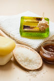 Set for care of skin body, bath accessories. Beauty treatment therapy and skin care. Closeup spa products some bath accessories on wooden table Stock Image