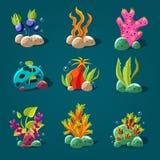 Set of Cartoon Algae, Elements for Aquarium Decoration. Stock Photo