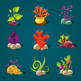 Set of Cartoon Algae, Elements for Aquarium Stock Photos