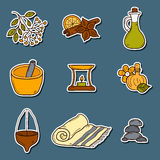 Set of cartoon ayurvedic icons in hand drawn style Royalty Free Stock Images