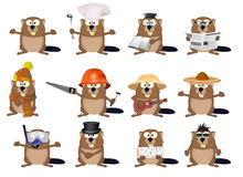Set of cartoon beavers Stock Photography