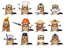 Set of cartoon beavers Stock Photography