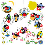 Set with cartoon birds Royalty Free Stock Photography