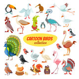 Set of cartoon birds Royalty Free Stock Photos