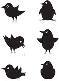 Set of cartoon birds icons. Royalty Free Stock Images