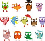 Set of  cartoon birds owls,vector. Illustration picture Stock Photography