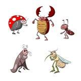 Set of cartoon bugs Stock Photography