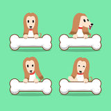 Set of cartoon character afghan hound dog with big bones Stock Photography