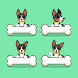 Set of cartoon character basenji dog with big bones Royalty Free Stock Photography