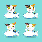 Set of Cartoon character cat with big fish sign Royalty Free Stock Image