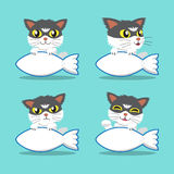 Set of cartoon character cat with fish sign Royalty Free Stock Photography