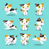 Set of Cartoon character cat poses Royalty Free Stock Photo