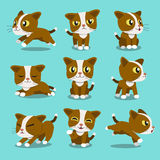 Set of Cartoon character cat poses Stock Images