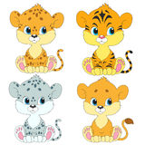 Set of cartoon characters. Cubs . Lion, leopard, tiger, snow leopard. Fluffy Young. Cute characters for your design Stock Photos