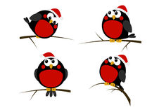 Set of cartoon Christmas birds Stock Image