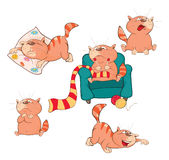 Set of Cartoon Cute Cats Stock Photo