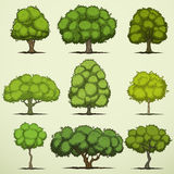 Set of cartoon deciduous trees. Cartoon deciduous trees of nine different species royalty free illustration