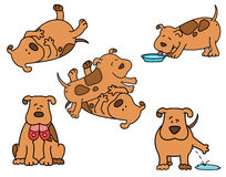 Set of cartoon dogs. Stock Photography