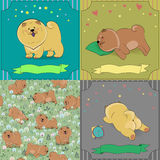 Set of cartoon dogs Chow-chow. Colorful vintage cards with funny pets. Seamless pattern with brown dogs. illustration. Banners for custom text Royalty Free Stock Image