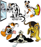 Set with cartoon dogs Stock Photography