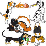 Set with cartoon dogs Royalty Free Stock Photos
