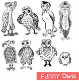 Set of cartoon doodle owls and owlets. Set of cartoon owls and owlets  doodle birds on white background. Black and white drawing Stock Image