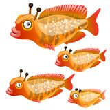 Set of cartoon fish isolated on white background. Vector cartoon close-up illustration. Set of cartoon fish isolated on white background. Vector cartoon Royalty Free Stock Images
