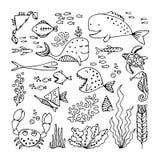 Set of cartoon fish and sea animals Royalty Free Stock Photography