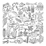 Set of cartoon fish and sea animals Stock Images