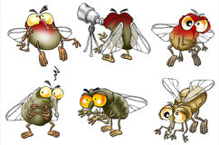 Set of cartoon flies Stock Photo