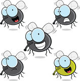 Set of Cartoon Flies Royalty Free Stock Images