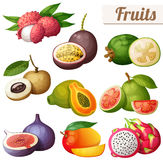 Set of cartoon food icons. Exotic fruits isolated on white background Stock Photography