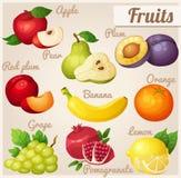 Set of cartoon food icons. Fruits Royalty Free Stock Photo