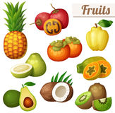 Set of cartoon food icons isolated on white background. Exotic fruits. Pineapple ananas , tamarillo, quince persimmon, papaya pawpaw , pomelo, avocado, coconut Royalty Free Stock Images