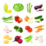 Set of cartoon food: vegetables Stock Images