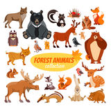 Set of cartoon forest animals. Big set of cartoon forest animals.Icon set  on white background Stock Images
