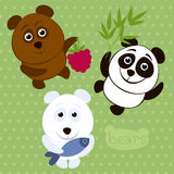 Set of cartoon funny bears. Funny cartoon characters: a brown bear with raspberries, a polar bear with fish and panda with bamboo leaves Royalty Free Stock Image