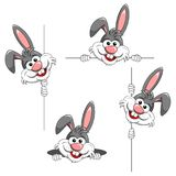 Set of cartoon funny character or mascot rabbit peek a boo behin. Set of cartoon funny character or mascot rabbit peeking behind poster or popping up from hole Stock Photo