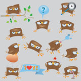 Set of cartoon funny sparrow. Birds Royalty Free Stock Images