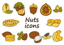 Set of cartoon hand drawn objects on nuts theme Royalty Free Stock Photography