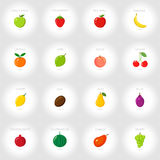 Set of cartoon icons. Fresh fruits. Abstract background. Vector illustration. Set of cartoon icons. Fresh fruits. Abstract background. Vector Stock Image